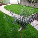 Garden Designs Showcase (15)