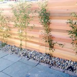 fencing and trellis (5)