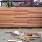 fencing and trellis (7)